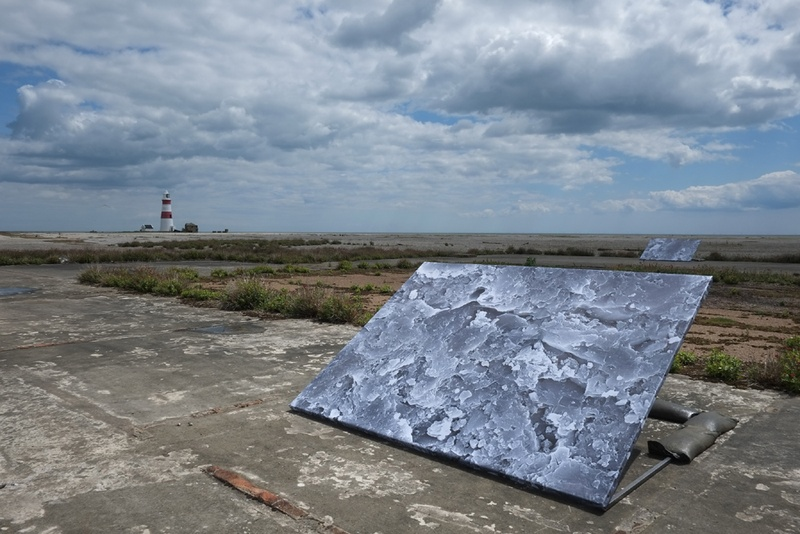 ANYA GALLACCIO, Untitled landscapes, 2014- credit Owain Thomas, courtesy SNAP Art at the Aldeburgh Festival