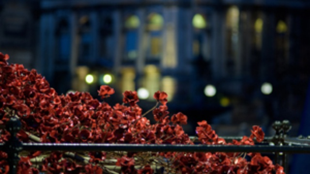 Weeping Window poppies sculpture installed in Liverpool